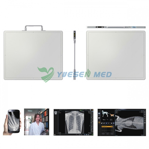 Flat Panel Detector - Digital Radiography Detector For All Kinds of X-ray Machine