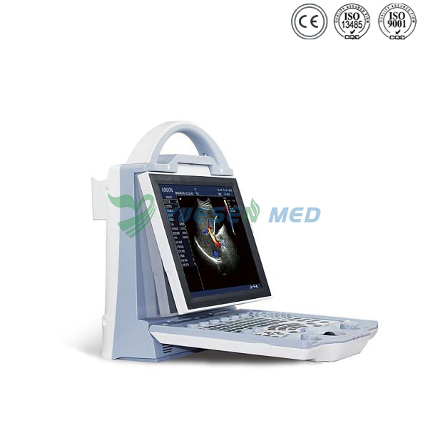 Portable color ultrasound