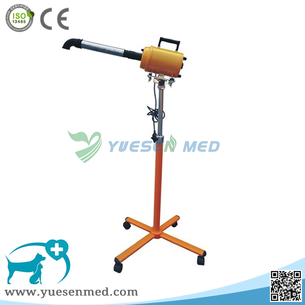 Standing veterinary hair drier