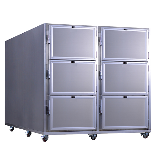 6 Corps Mortuary Fridge For Sale - 6 Bodies Mortuary Refrigerator price