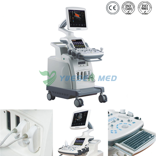 Trolley 3D 4D Color Doppler Ultrasound Scanner YSB8000P