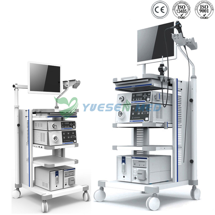 Video Endoscope System