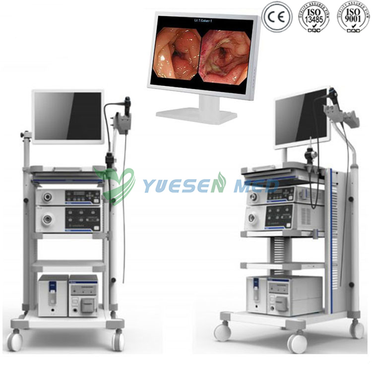 Video Endoscope System YSVG1T30