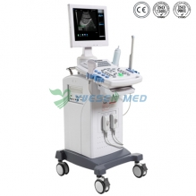 Trolley Mobile Ultrasound Machine YSB9618C