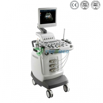 3D 4D Color Doppler Echocardiography YSB-Q5