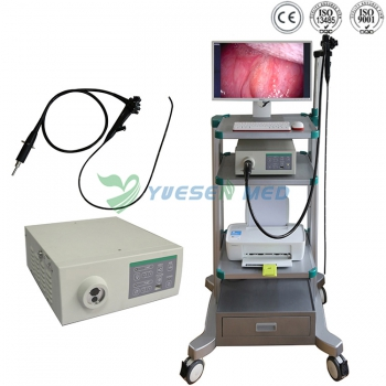 Veterinary Video Endoscope System YSNJ-100VET